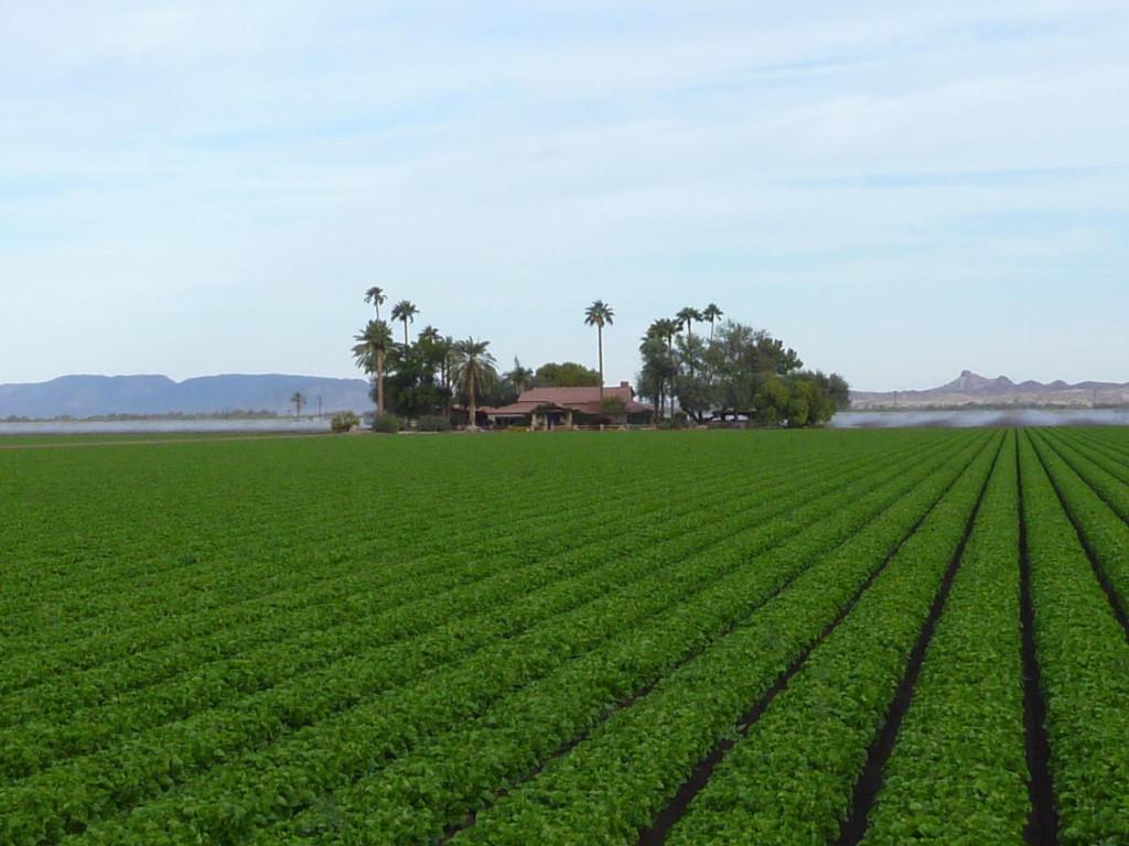 Nice Hacienda!