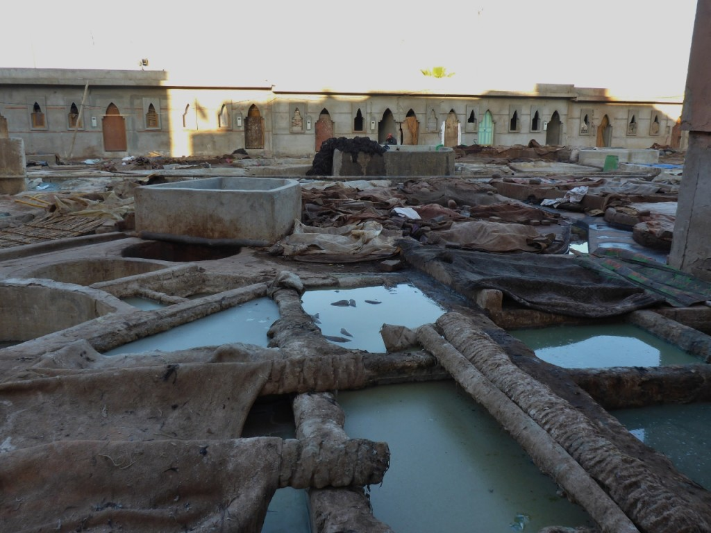 The tannery consists of several pools or stages to treat the skins.