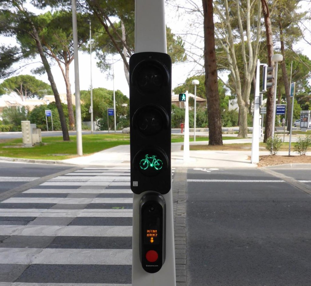 A bicycle traffic signal.