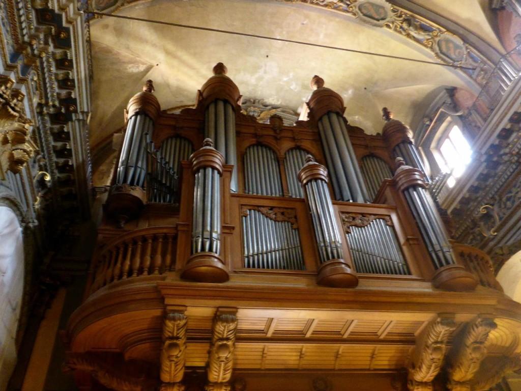 and organ.