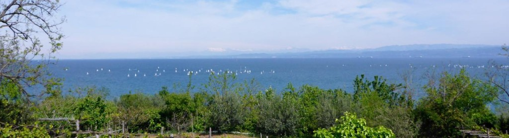 A sailboat race and the Italian Alps in the background. A storm came through and dropped lots more snow on the Alps.