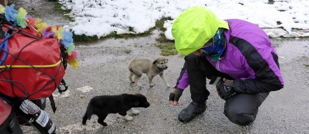 Jocelyn with her new friends.