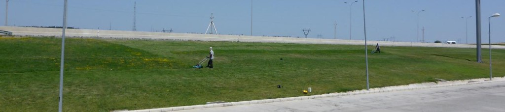 At the auto plaza these two guys were mowing this massive grassy area with two small electric mowers! Talk about cord length.