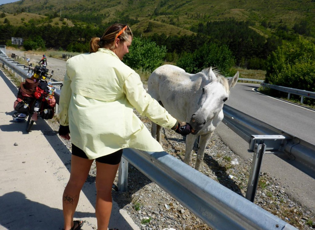 On the side of the highway was this skinny horse. Jocelyn gave him a few apples that he devoured.