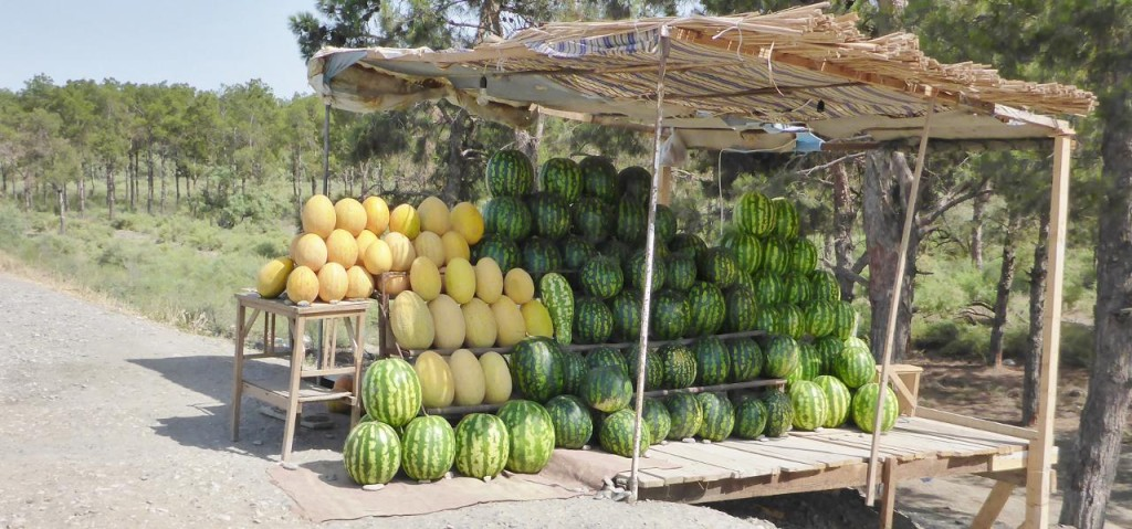 What a nice melon display.