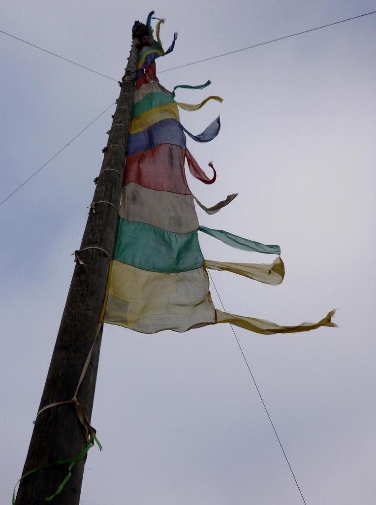Tibetan prayer flags. We were able to purchase several sets to hang on our house. Really cool looking when faded and flying.