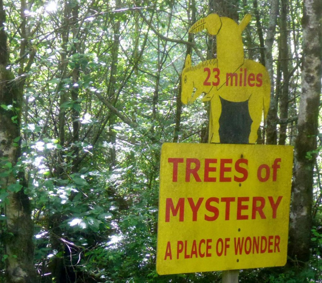 A mystery sign with what appears to be a tree branch in the Indian's back.