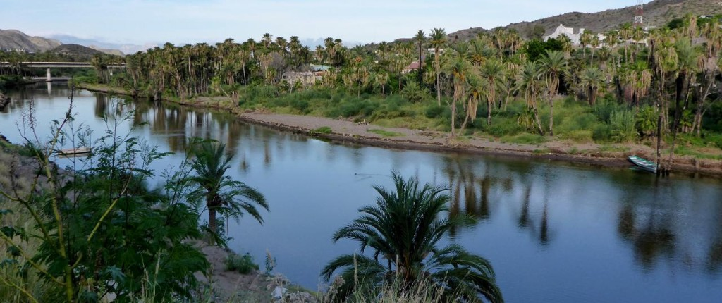 A beautiful oasis in Mexico. The old mission built in the 1700's on the upper right.