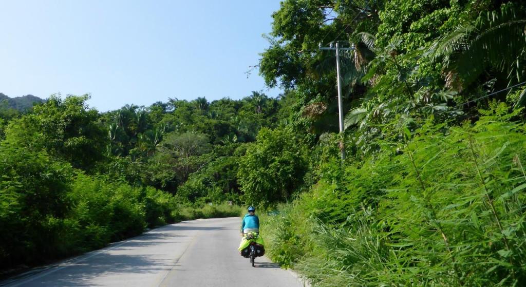 Climbing into the jungle.
