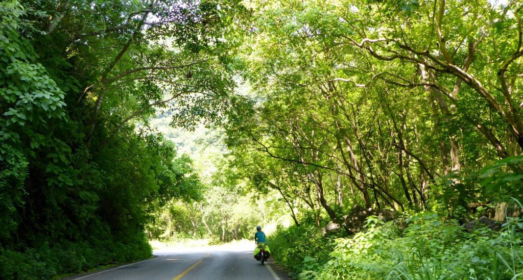 While riding through this mountain jungle we heard lots of different birds and what appeared to be monkeys. Jocelyn spotted a group of 20 orange monkeys crossing the road. I saw the last two. Too quick for a picture.