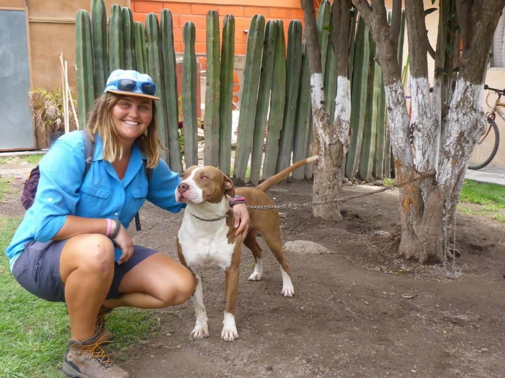 Jocelyn and a new friend Bean. He looks just like her dog Yaki at home.
