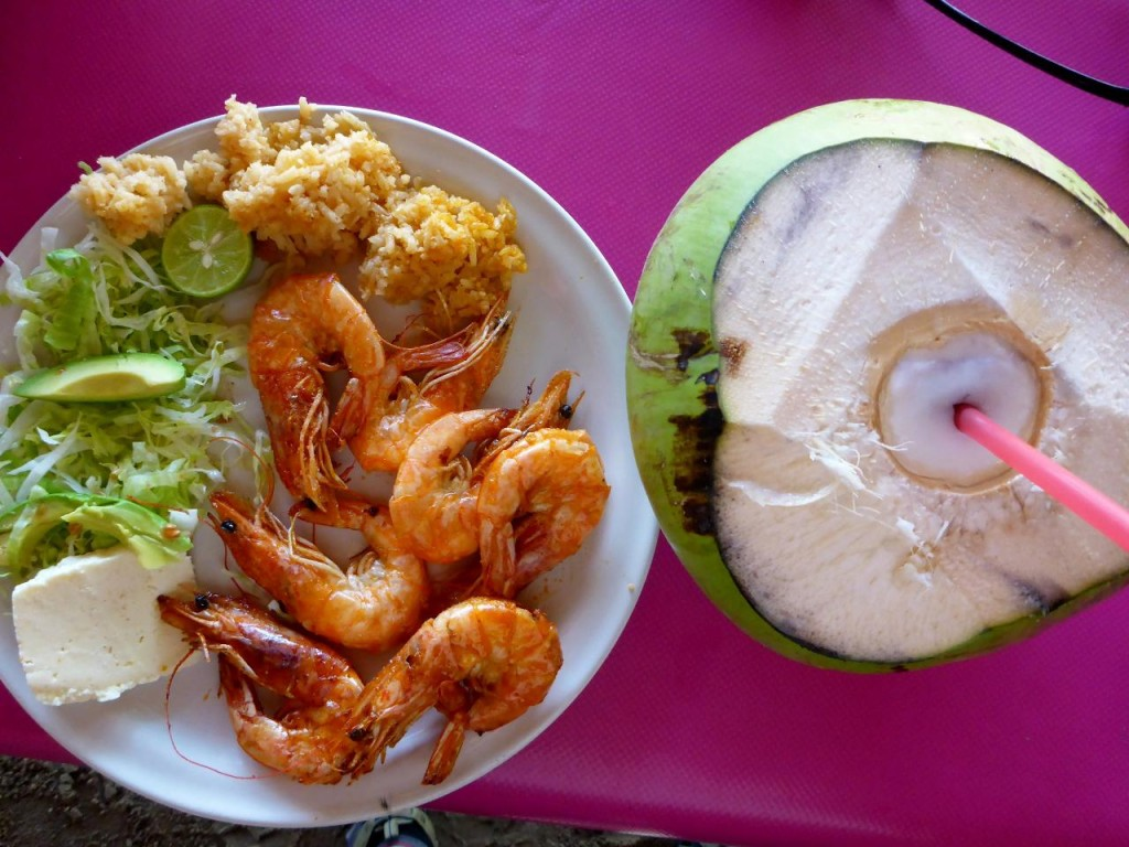 Delicious camarones along with a coconut.