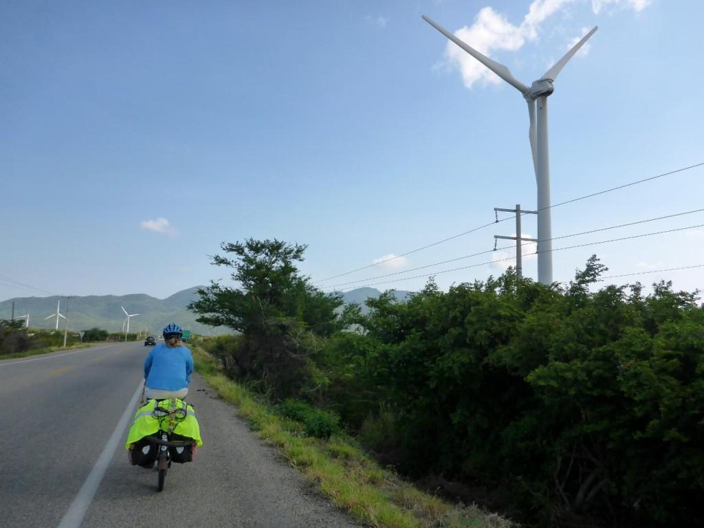 Hundreds of wind turbines.