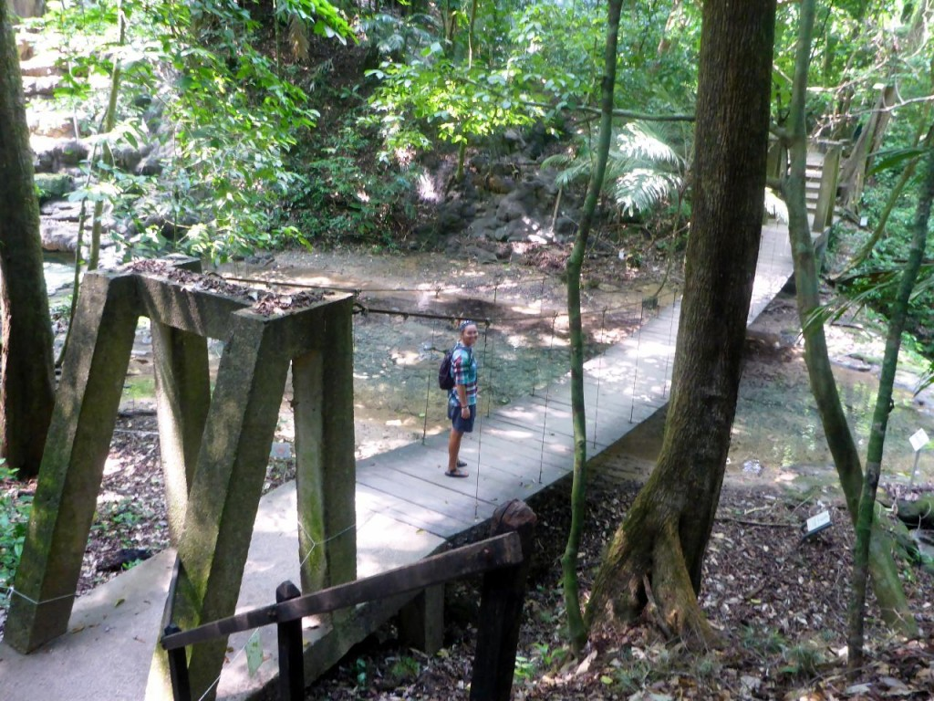 Leaving the ruins and walking through the jungle.