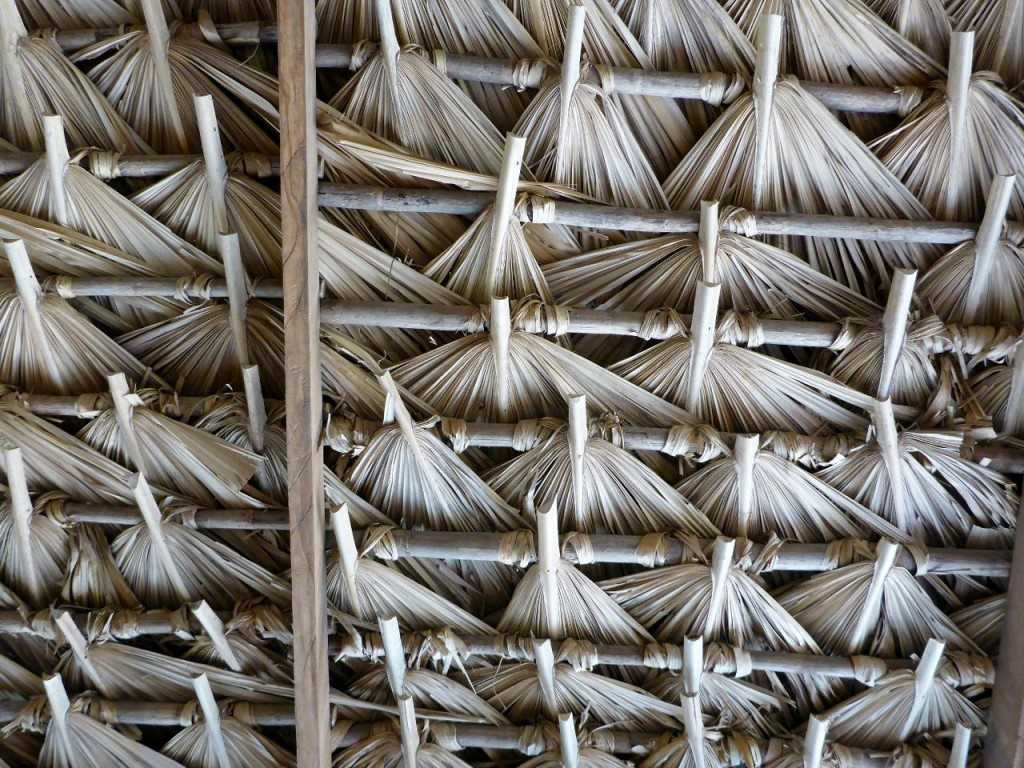 A very fine palapa structure.