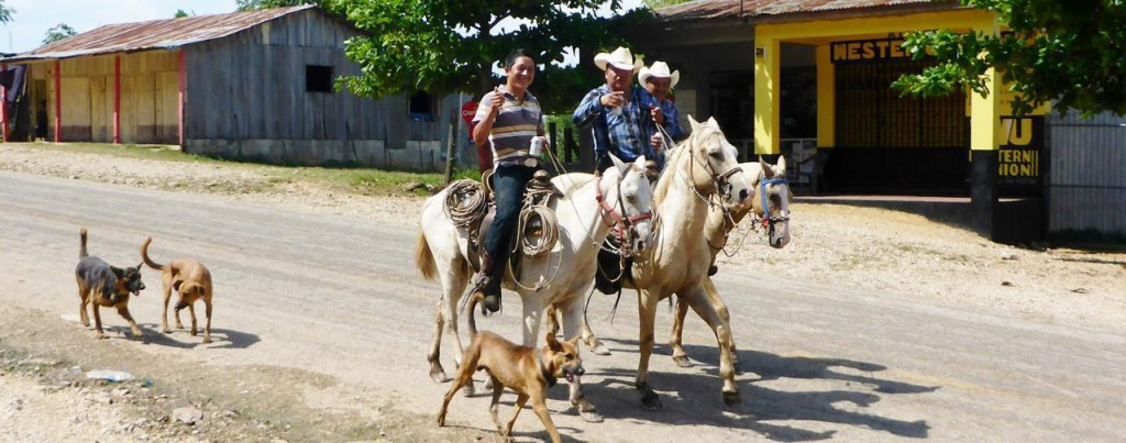Trotting down main street at the Guatemala border town drinking beer - our welcome to Guatemala committee. They offered to let us ride their horses and they our bikes.