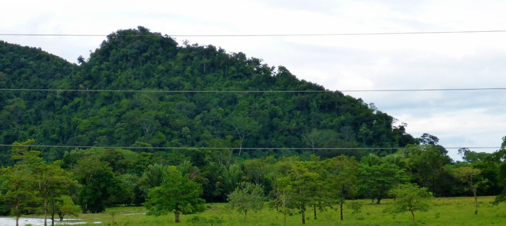 The hills of Belize.