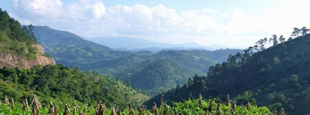 The beauty of Honduras.