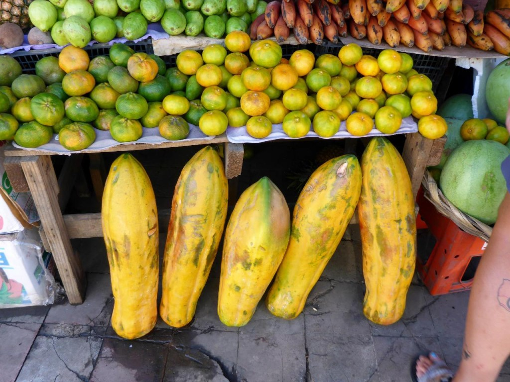 We have never seen such massive papayas. I bought 6 slices for a few cents.