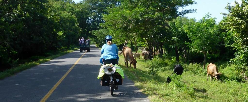 Local island traffic.