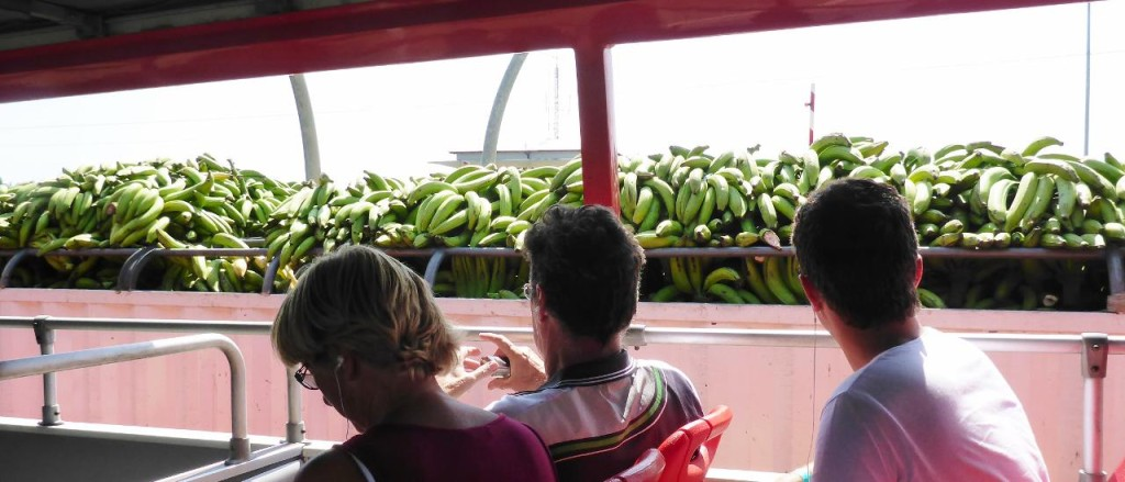 A truck full of bananas from our double decker bus.
