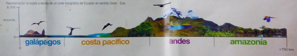A cool profile of Ecuador. We entered Ecuador from Amazonia, Colombia into Amazonia, Ecuador. Then we climbed west into the Andes.
