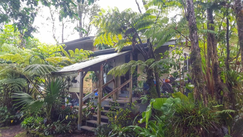 Andy and Mariah's house on the Big Island of Hawaii. 2 acres of beautiful jungle.