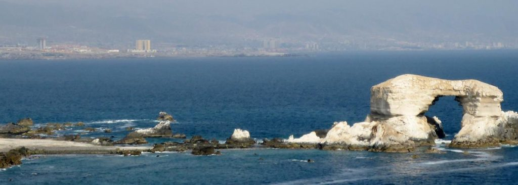 The port city of Antofagasta in the background.