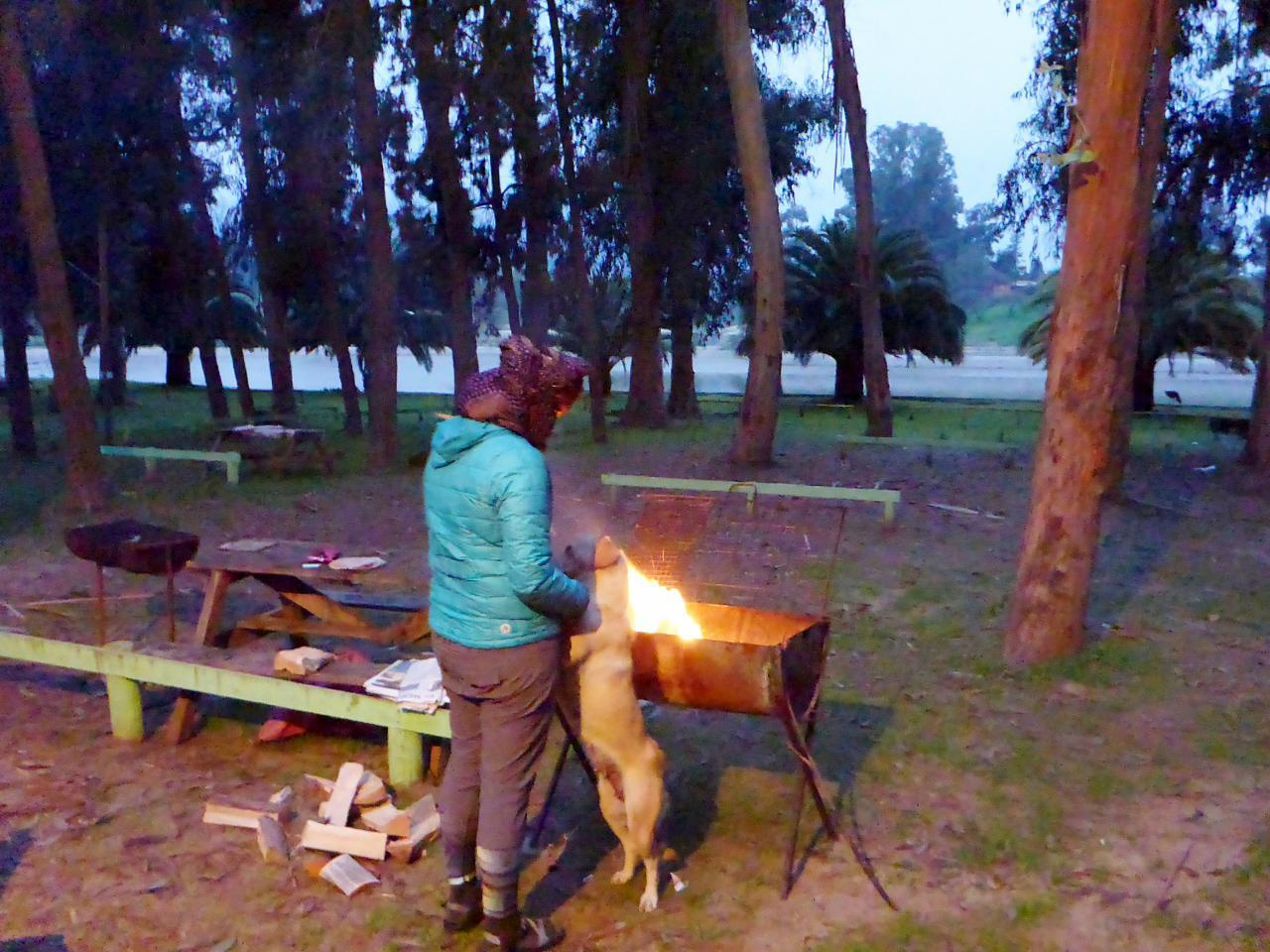 Jocelyn cooks dinner and made a fine fire. She also found a new friend.