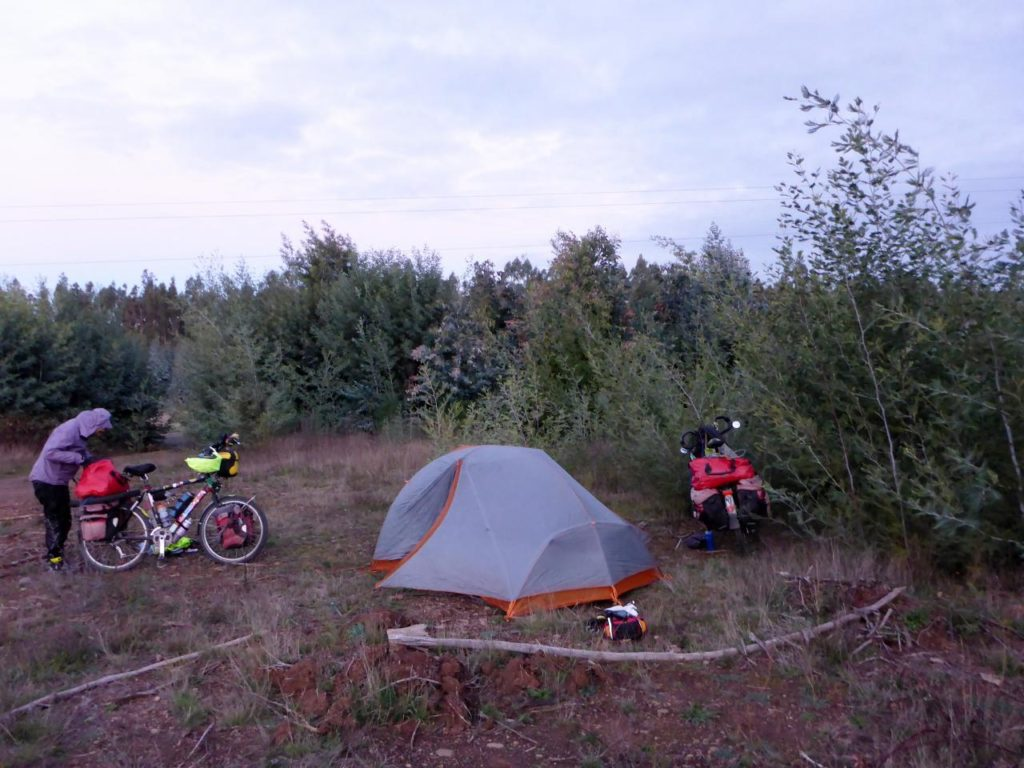 A fine campsite in the forest.