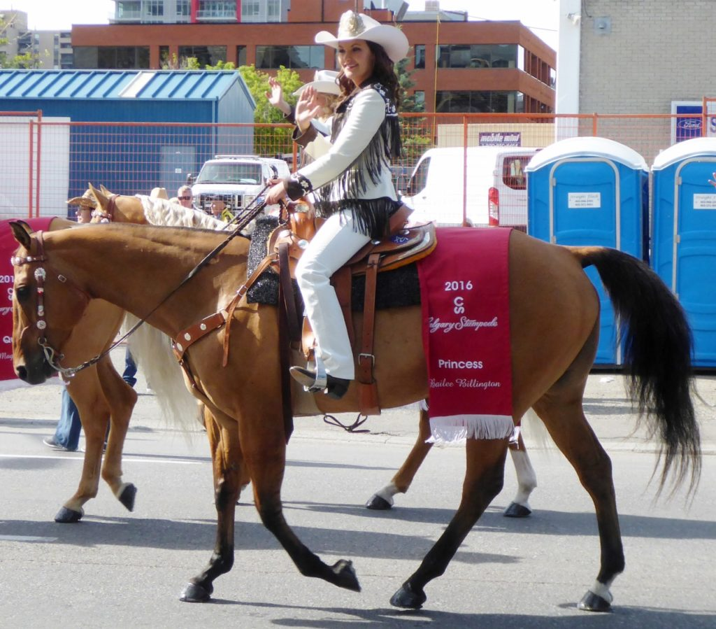 We lucked out as our return to Calgary gave us the opportunity to attend the Calgary Stampede.