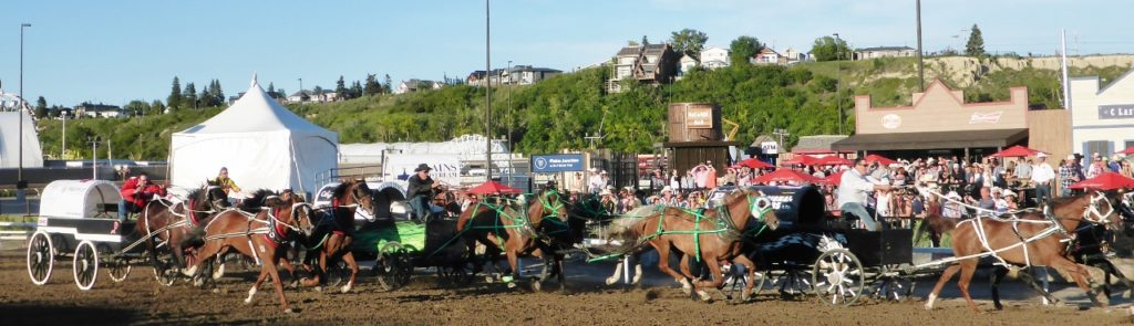 The chuckwagon races were so exciting.