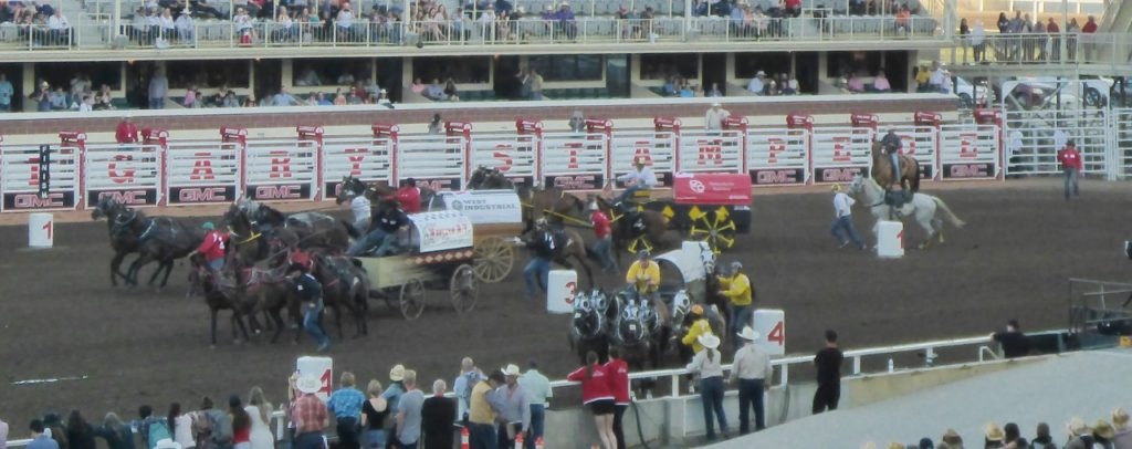 A very exciting start as the chuckwagons start at their number 1-4 then are required to race around their other marker and race one lap. The purse for the chuckwagons alone is 1.2 million dollars.