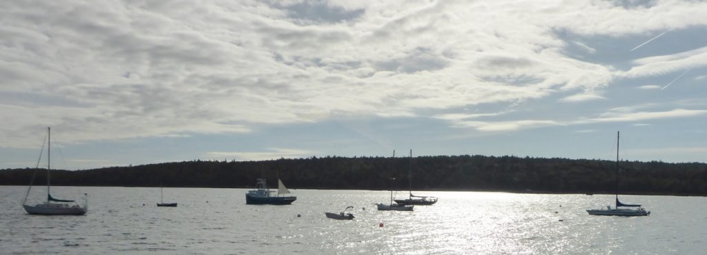 The harbor at Shelburne.