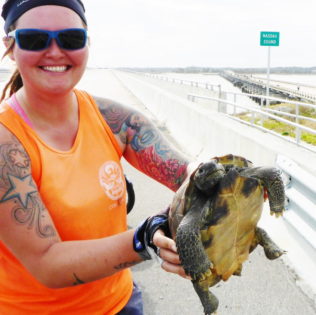 Jocelyn rescued this turtle that was trying to cross this bridge.